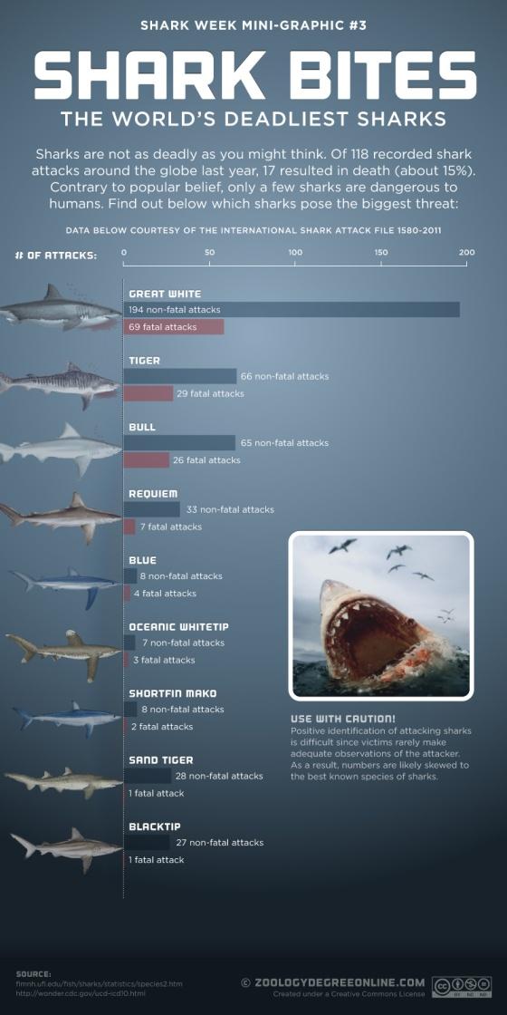 Shark Bites – The World's Deadliest Sharks