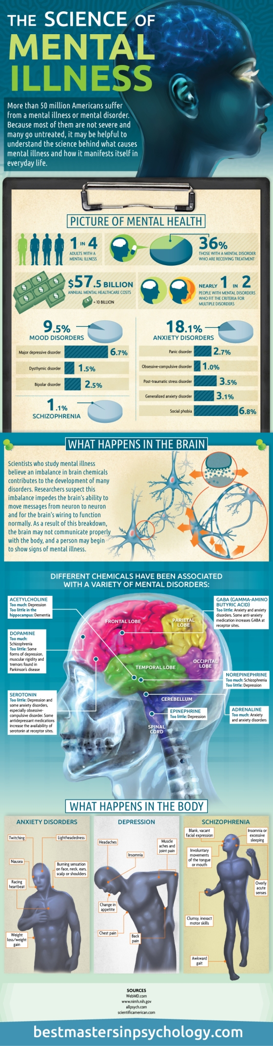 Infographic:The Science of Mental Illness