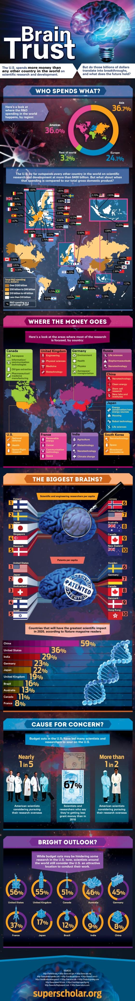 Infographic : Brain Trust