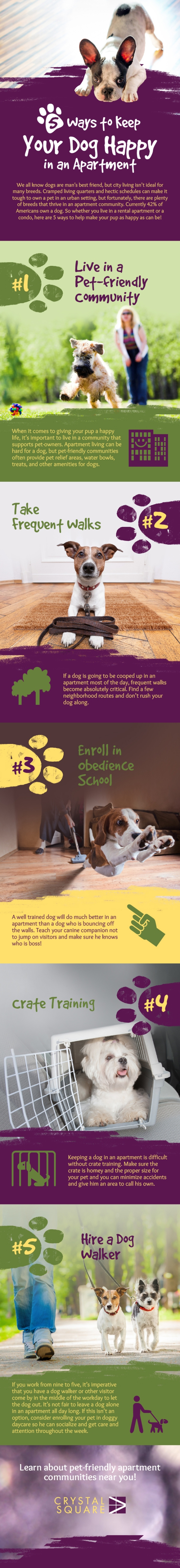 Infographic : Pet Lovers: How To Keep Your Dog Happy In The Apartment